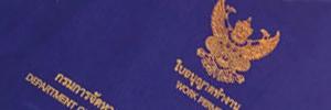 ビザ、労働許可書サービスのイメージ